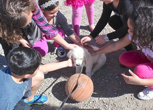 Camo meets the kids
