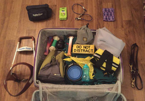 "Gabrielle's tools-of-the-trade must be packed, including her ""DO NOT DISTRACT"" harness sign, Ruffwear Grip Trex boots, and several other items"
