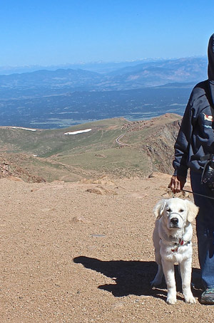 Cam'O standing at summit's edge, secured by leash to me, with a view of more mountains looming in the distance.