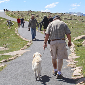 Cam'O walking up one of the paved walkways available from the many parking areas along Trail Ridge Road.
