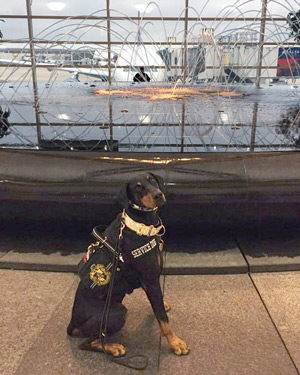Kaline poses like a model in front of the dancing fountain at the Detroit airport