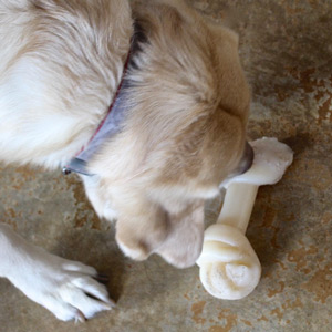 Cotton with the knotted end bone