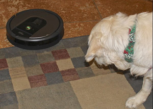 "Cam'O watches the new ""robot"" vacuum"