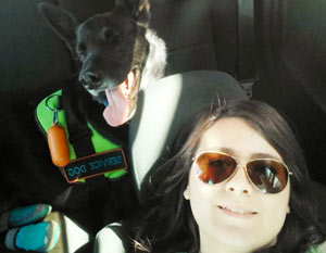 Kash, a black german shepherd, and Trinda side by side taking selfies.