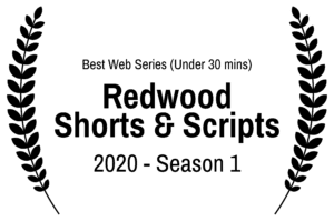 BestWebSeriesUnder30mins-RedwoodShortsScripts-2020-Season1